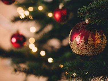 Har julgranen redan börjat barra ?